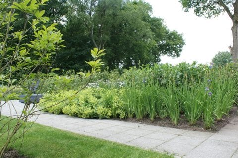 Uw tuin winterklaar maken? Volg onze tips!