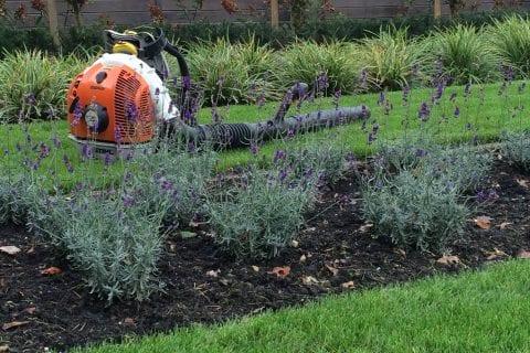 Is uw tuin al herfstklaar?